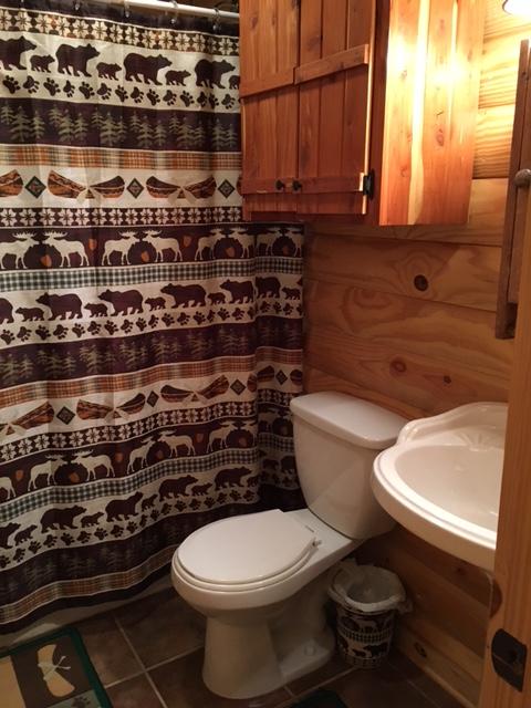 Eagles Nest Cabin Downstairs Bathroom